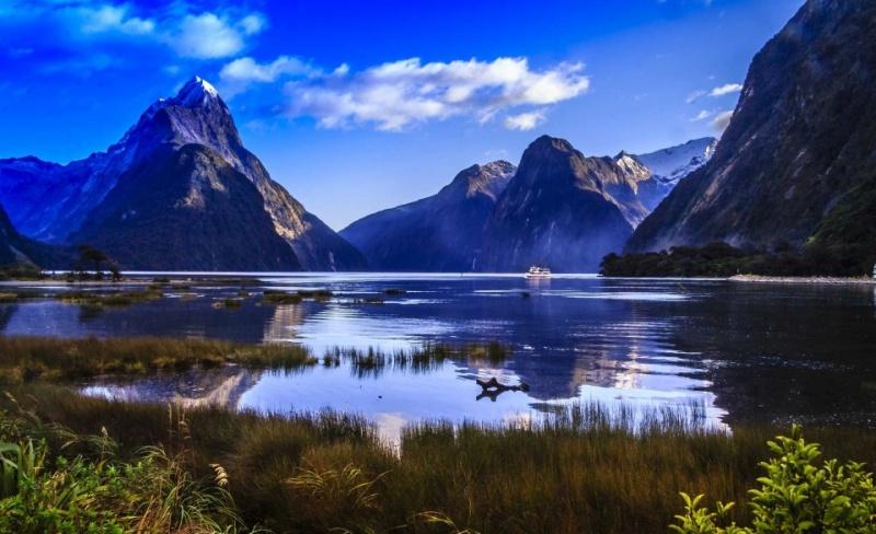 Topic unique : Posez vos questions à Renov'Car Passion -> ND Car Care 1517233411-800-x-488px-Nouvelle-Zélande